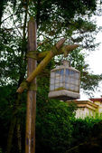 Lamp post in the Frontierland — Stock Photo