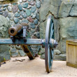 Cannon in the Frontierland — Lizenzfreies Foto