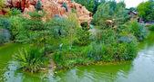 Rock, lake and grass — Stock Photo