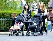Familie met twee kinderwagens — Stockfoto