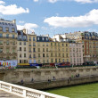 River Seine and Paris buildings — Stock Photo #13541231