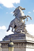 Památník koně v paříži — Stock fotografie