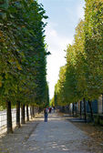 Park in Paris — Stock Photo