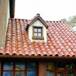 Roof of the decorative house — Stockfoto