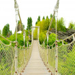 View of the rope bridge — Stock Photo