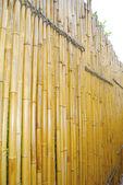 Fensa de bambú — Foto de Stock