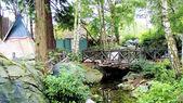这座木桥和小屋 — 图库照片
