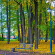 Bench and lamp post in the park in autumn — Stock Photo