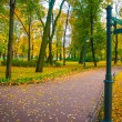 Beautiful park in autumn — Stock Photo #13733118