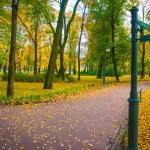 Beautiful park in autumn — Stock Photo