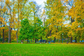 Park in autumn — Fotografia Stock