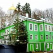 Green building in winter - Foto Stock