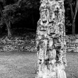 Stock Photo: Emblematic symbol of HondurMaycivilization at Copan