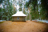 Wooden house in the forest of Mikhaylovskoye Museum Reserve wher — Stock Photo