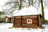 Wooden house in old Russin style in Mikhaylovskoye Museum Reserv — Stock Photo