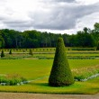 Beautiful summer garden  of the Castle Fontainebleau - Stock Photo