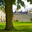 Stock Photo: Tree in front of Fontainebleau, French castle