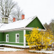 Green house in the village Mihaylovskoe in winter — Stock Photo #14736303