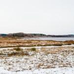Landscape of the winter in Mihaylovskoe, Pskov region, Russia — Stock Photo