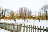 Village Mihaylovskoe in winter in Russia — Stock Photo