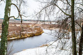 Lake in the forest in winter — Stock Photo