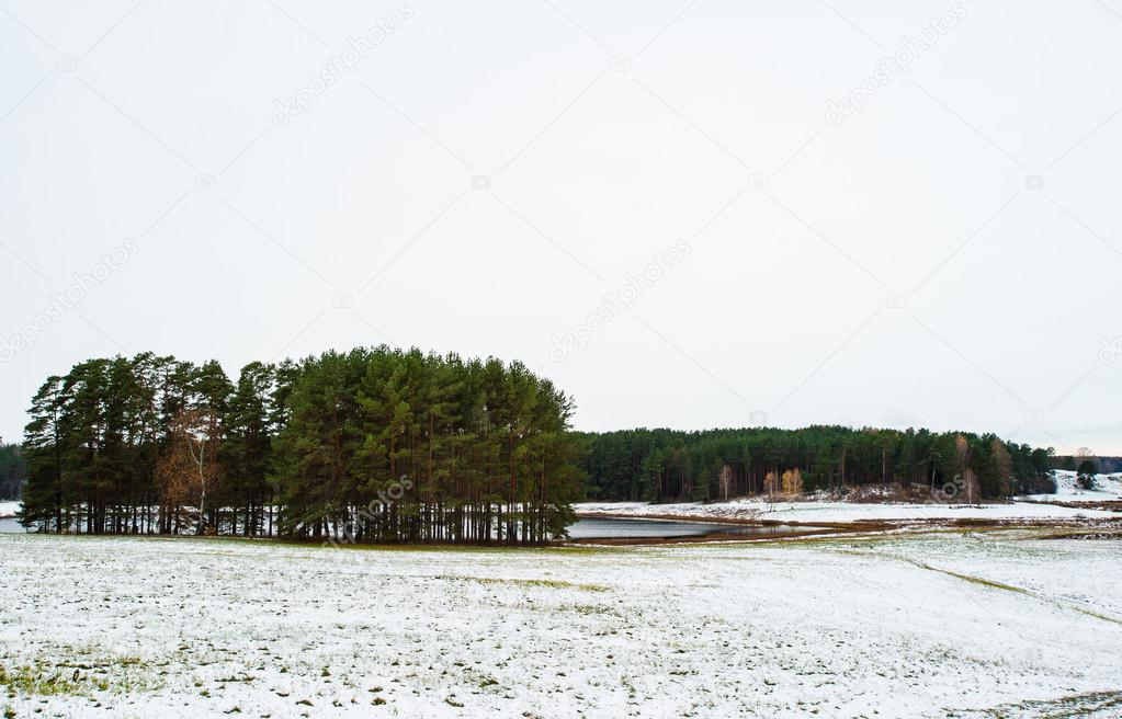 Landscape of the winter in Mihaylovskoe, Pskov region, Russia — Stock Photo #14736773