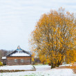 Trigorskoe village in Russia, where Alexandr Pushkin lived — Stock Photo