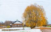 Trigorskoe village in Russia, where Alexandr Pushkin lived — Stock Photo