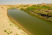 Khwarezm, uzbekistan, deserto, asia — Foto Stock