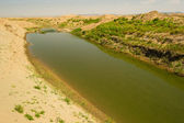 Khwarezm, uzbekistan, öknen, asien — Stockfoto