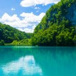 Blue river and green nature, landscape - Stock Photo