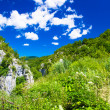 Incredible landscape in of the nature in Croatia — Stock fotografie