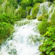 Stock Photo: Nature of Croatia, Europe. Water runs among the stones