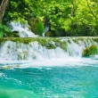 Very beautiful sigh of a green oasis in Croatia — Stock Photo