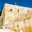 Stock Photo: Excavations on south side of temple mount