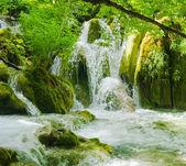 Landscape of the beautiful nature of Croatia, Europe — Stock Photo