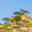landscape of the mount kumgang — Stock Photo