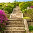Stairs at the Tomb of King Kongmin — Stock Photo