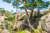 Summer day, Mount Kumgang — Stock fotografie
