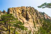 Landscape of the spectacular view of the nature of the rocks of — 图库照片