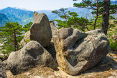 North Korea nature of the Mount Kumgang in Kangwon-do, North Kor — Stock Photo