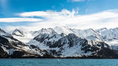 Landscape of South Georgia — ストック写真