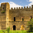 Castle of Fasilides, Gondar, Africa — Stockfoto
