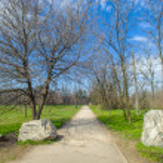 Island Hortitsia, Zaporozhie, Ukraine — Stock Photo #30583435