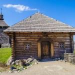 Island Hortitsia, Zaporozhie, Ukraine — Stock Photo #30584221