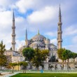 Blue mosuqe, Istanbul, Turkey — Stock Photo