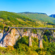 Northern Part of Montenegro — Stock Photo #34954323
