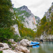 Tara river, Montenegro — Stock Photo #34954731