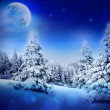 Winter night in fairy snowy fir forest with moon and starry sky. Christmas tree, winter mountains landscape. Can be used as Christmas or New Year card or greeting. — Stock Photo