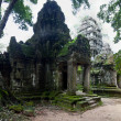Stock Photo: TProm temple, Siem Reap, Cambodia
